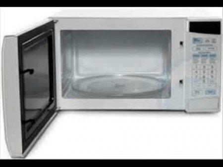 Hitachi Microwave 1