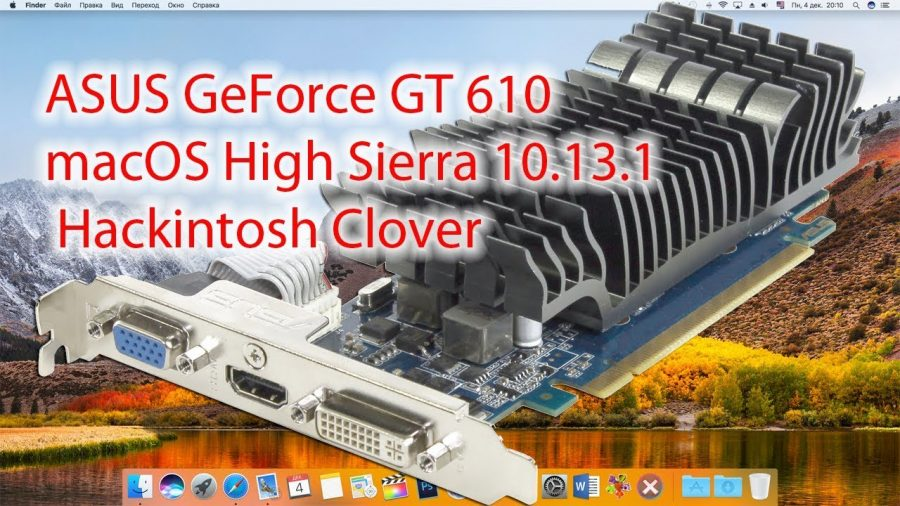 Asus Geforce Gt 610 Driver 1